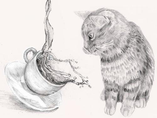 Bild av en katt, illustration i blyerts